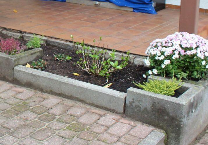 Neue Pflanzenbeete_1024x576